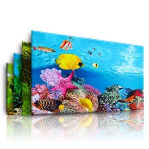 Mořská tapeta do akvária